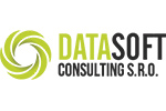 Datasoft Consulting